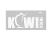Kiwi Fotos